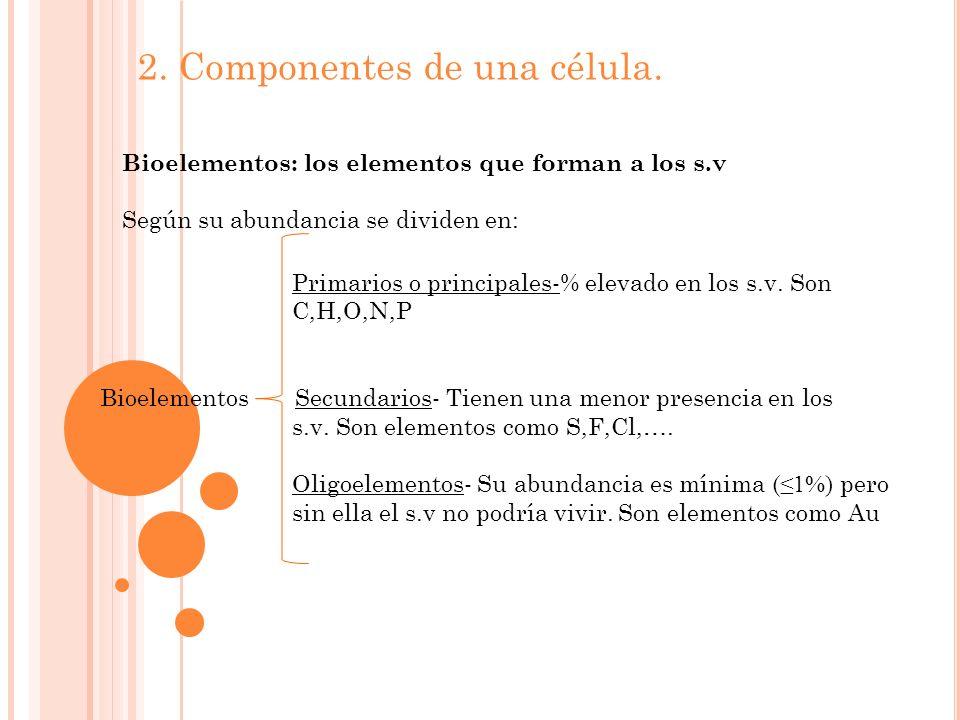 2. Componentes de una célula.