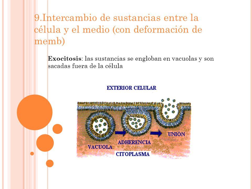 9.Intercambio de sustancias entre la célula y el medio (con deformación de memb)