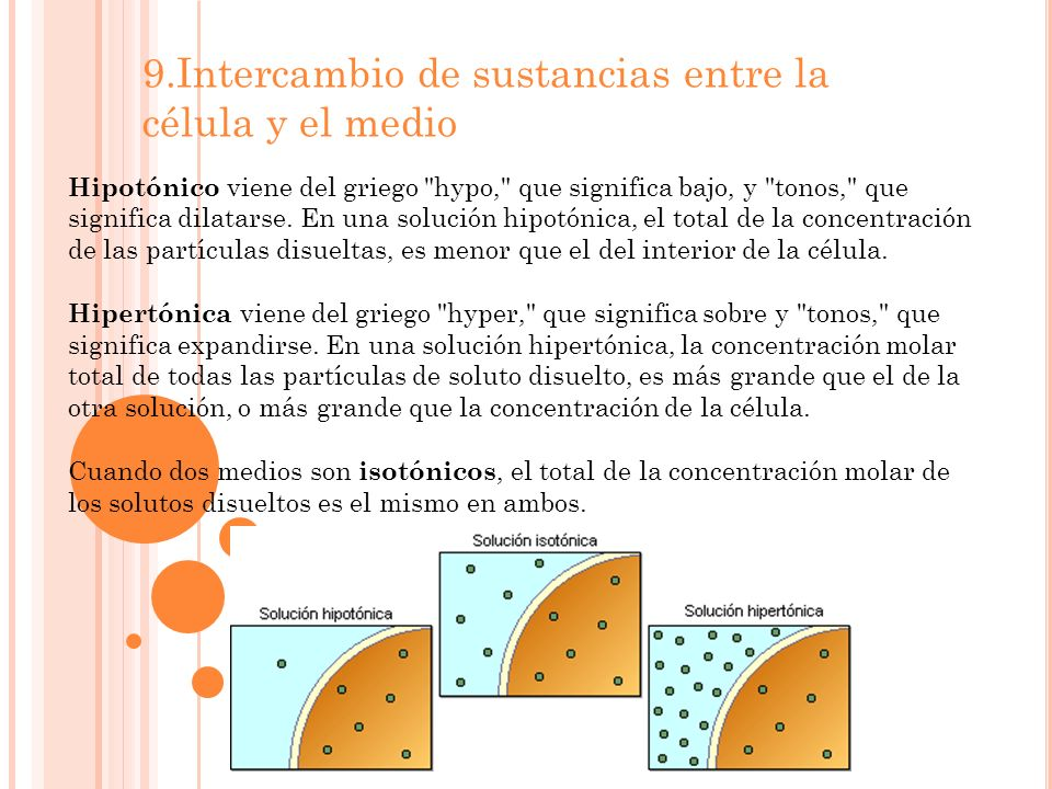 9.Intercambio de sustancias entre la célula y el medio