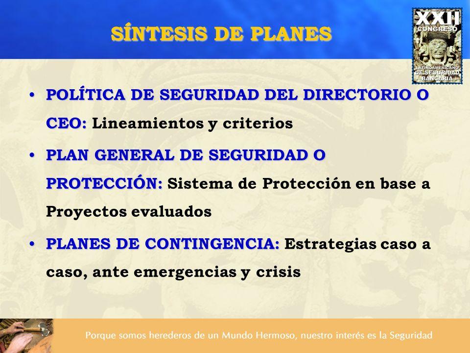 SÍNTESIS DE PLANES POLÍTICA DE SEGURIDAD DEL DIRECTORIO O CEO: Lineamientos y criterios.