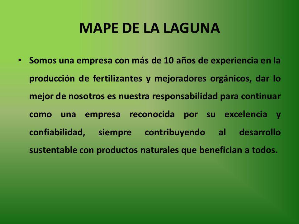 MAPE DE LA LAGUNA