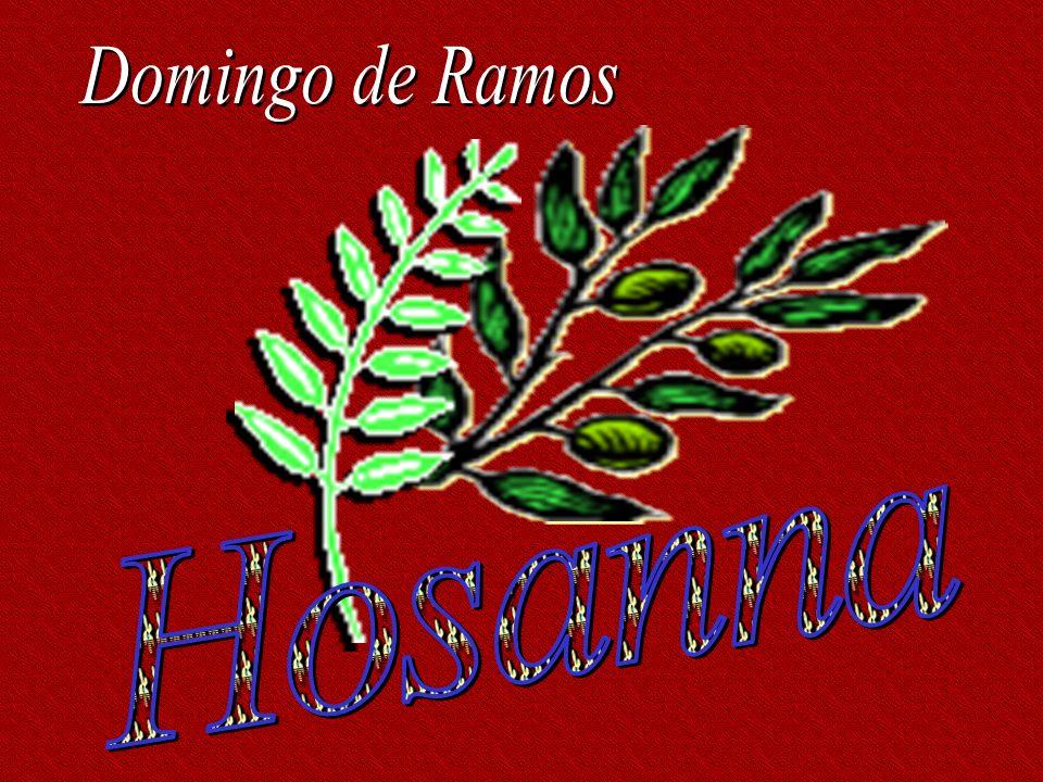 Domingo de Ramos Hosanna