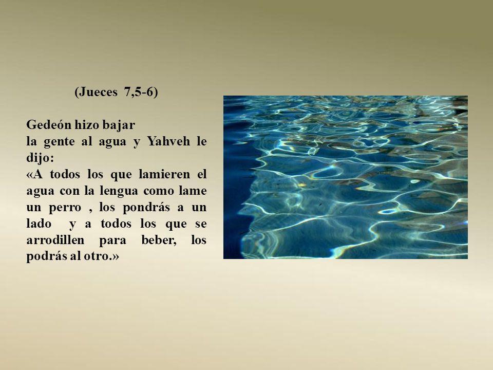 (Jueces 7,5-6) Gedeón hizo bajar. la gente al agua y Yahveh le dijo: