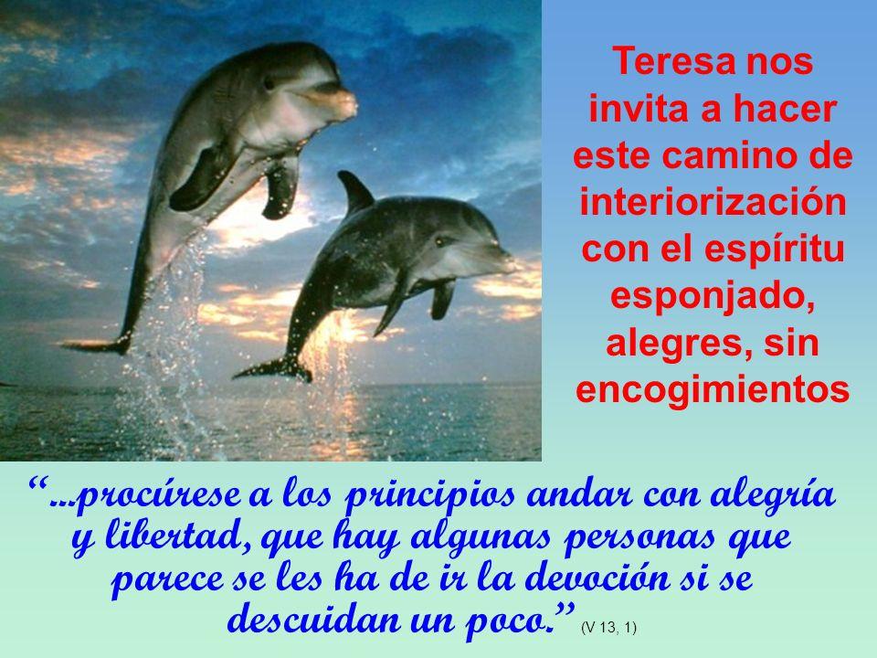 Teresa nos invita a hacer este camino de interiorizacióncon el espíritu esponjado, alegres, sin encogimientos