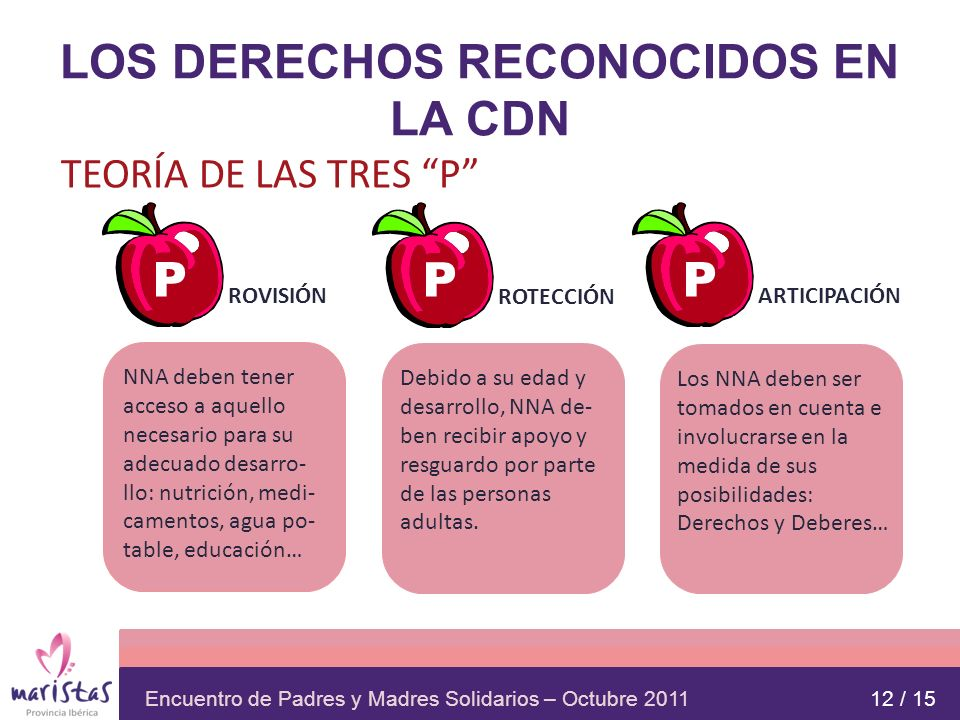 LOS DERECHOS RECONOCIDOS EN LA CDN