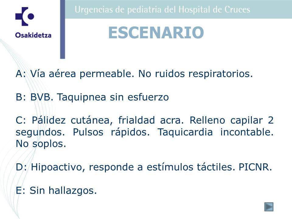 ESCENARIO A: Vía aérea permeable. No ruidos respiratorios.