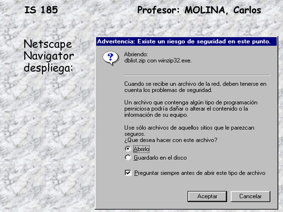 Netscape Navigator despliega: