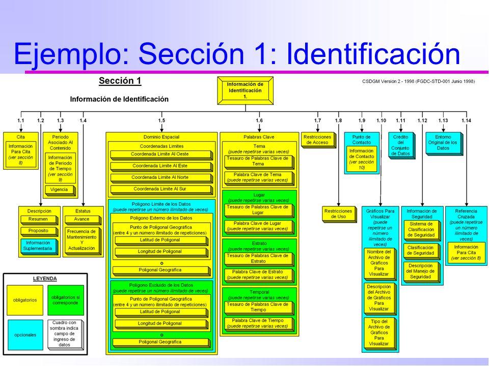 Ejemplo: Sección 1: Identificación