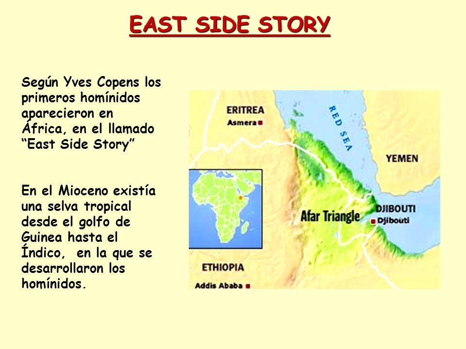 EAST SIDE STORY Según Yves Copens los primeros homínidos aparecieron en África, en el llamado East Side Story