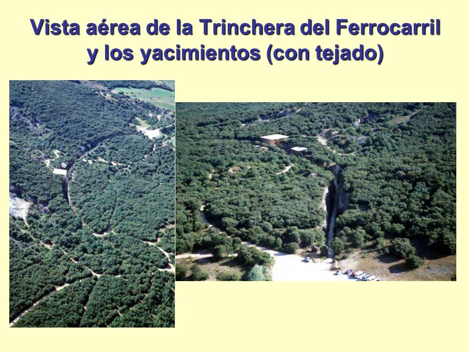 Vista aérea de la Trinchera del Ferrocarril y los yacimientos (con tejado)