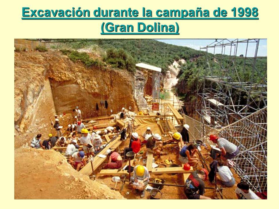 Excavación durante la campaña de 1998 (Gran Dolina)