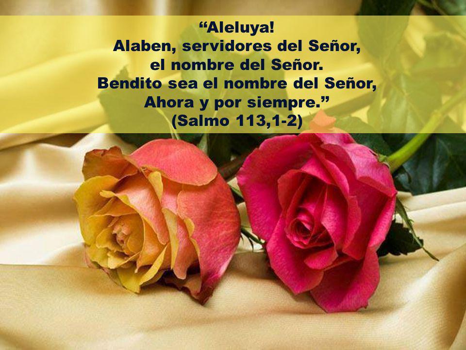 Alaben, servidores del Señor, el nombre del Señor.