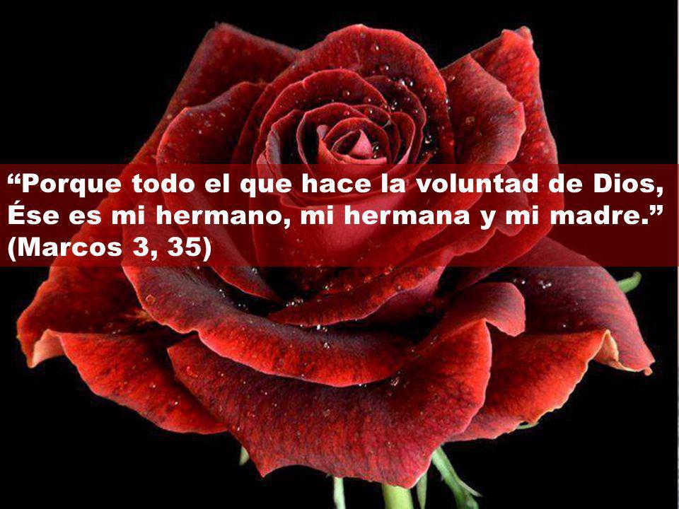 ''Porque todo el que hace la voluntad de Dios,
