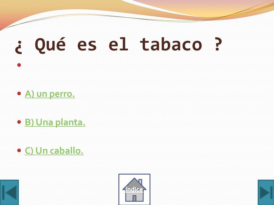 ¿ Qué es el tabaco A) un perro. B) Una planta. C) Un caballo. índice