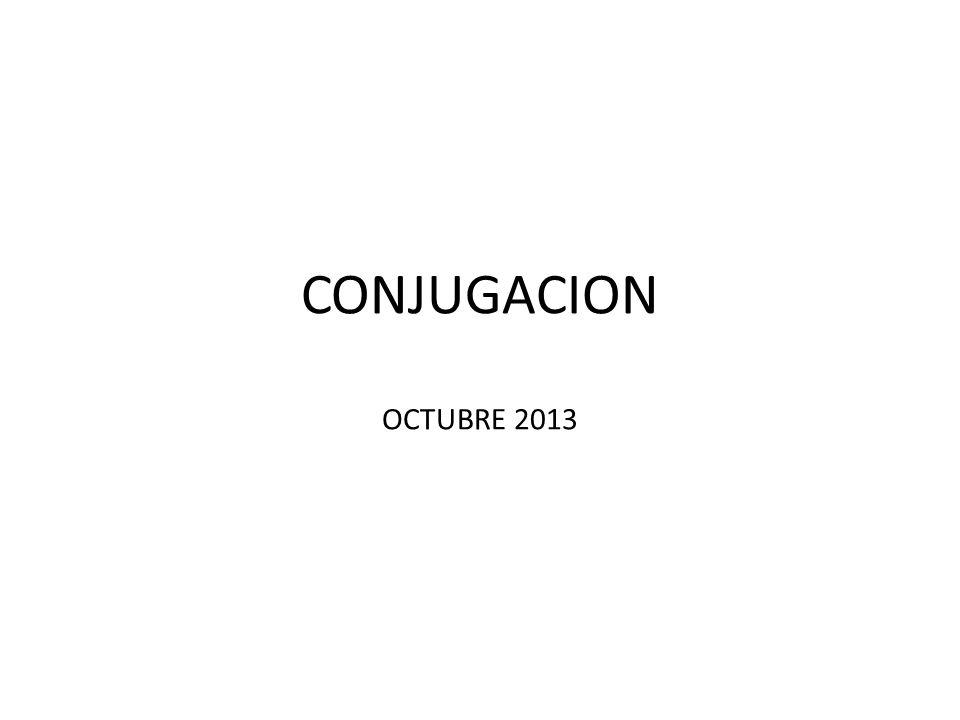 CONJUGACION OCTUBRE 2013