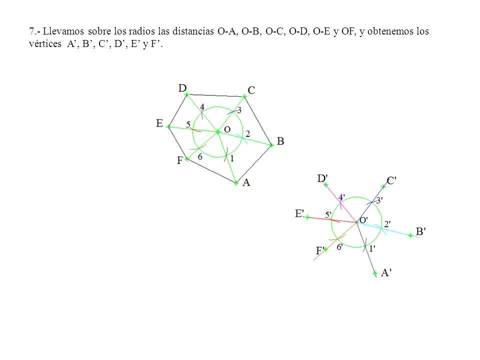 7.- Llevamos sobre los radios las distancias O-A, O-B, O-C, O-D, O-E y OF, y obtenemos los vértices A', B', C', D', E' y F'.