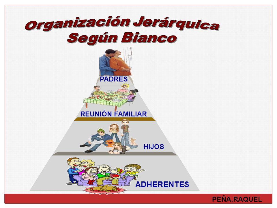 Organización Jerárquica