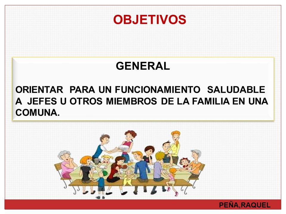 OBJETIVOS GENERAL. ORIENTAR PARA UN FUNCIONAMIENTO SALUDABLE A JEFES U OTROS MIEMBROS DE LA FAMILIA EN UNA COMUNA.