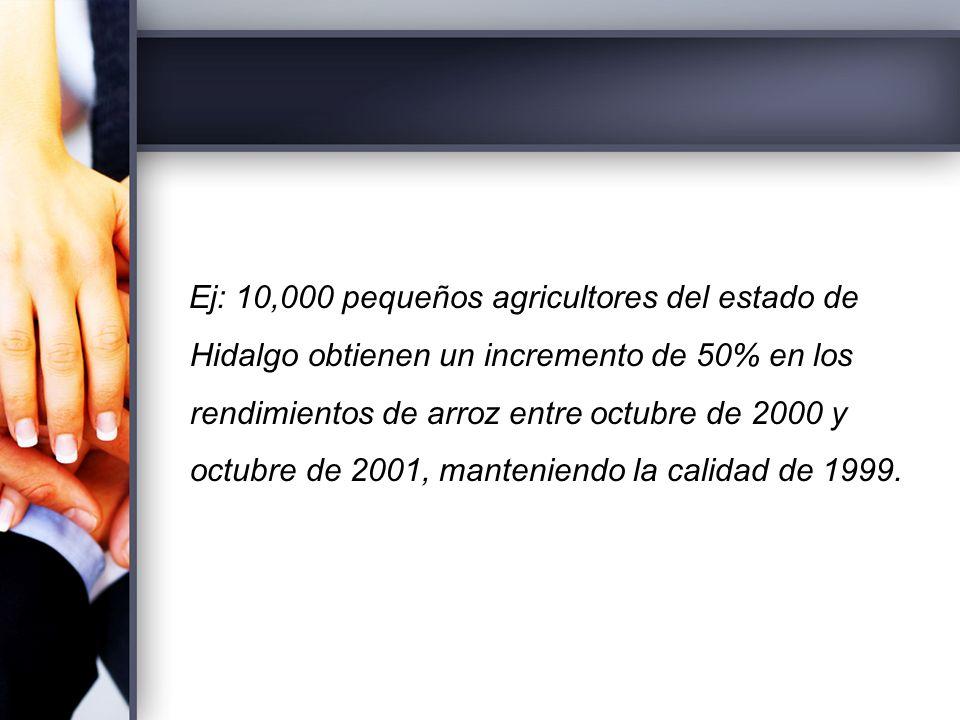 Ej: 10,000 pequeños agricultores del estado de Hidalgo obtienen un incremento de 50% en los rendimientos de arroz entre octubre de 2000 y octubre de 2001, manteniendo la calidad de 1999.