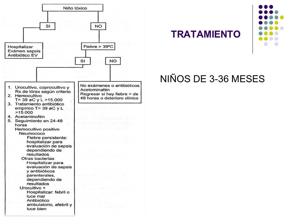 TRATAMIENTO NIÑOS DE 3-36 MESES