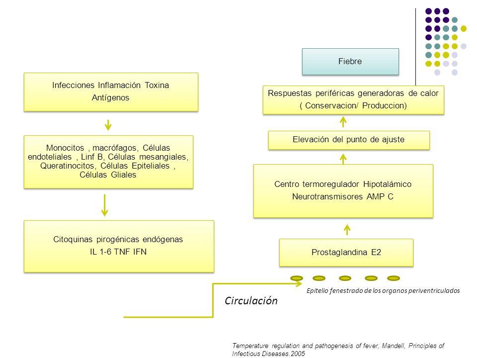 Circulación Fiebre Infecciones Inflamación Toxina Antígenos