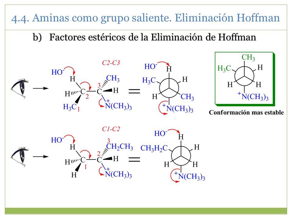 Factores estéricos de la Eliminación de Hoffman