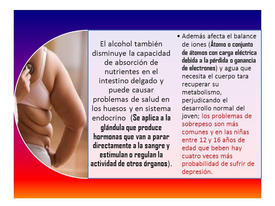 El alcohol también disminuye la capacidad de absorción de nutrientes en el intestino delgado y puede causar problemas de salud en los huesos y en sistema endocrino (Se aplica a la glándula que produce hormonas que van a parar directamente a la sangre y estimulan o regulan la actividad de otros órganos).