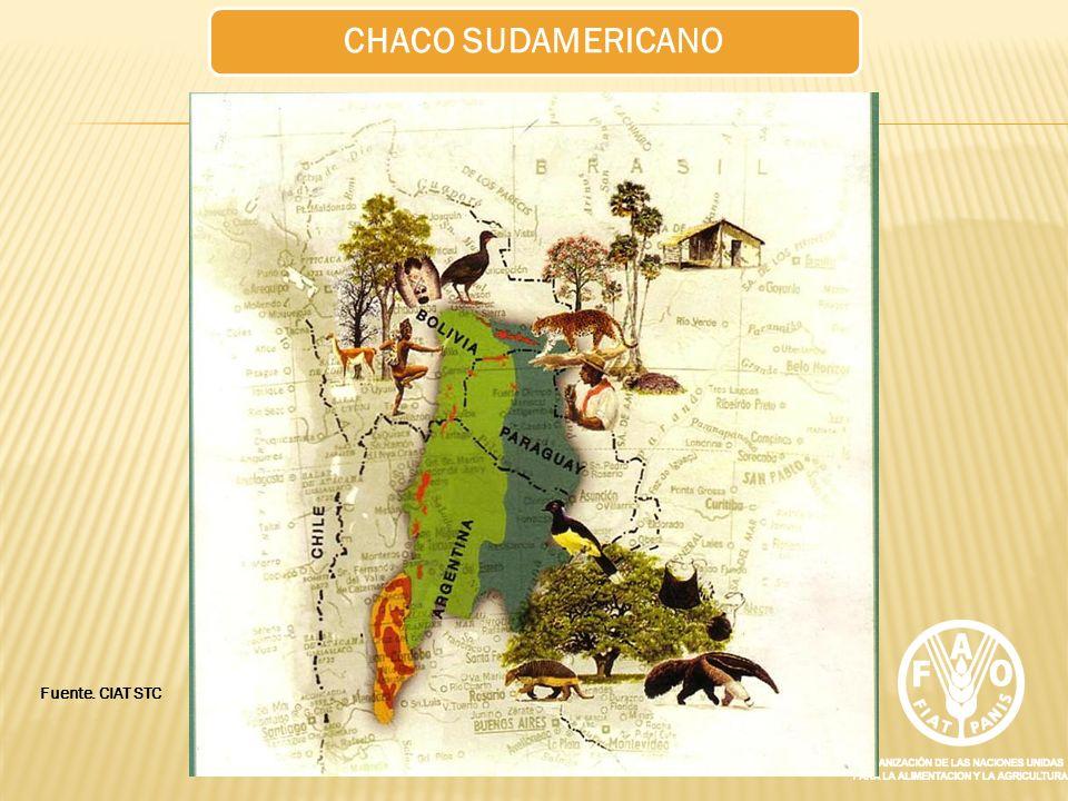 CHACO SUDAMERICANO Fuente. CIAT STC