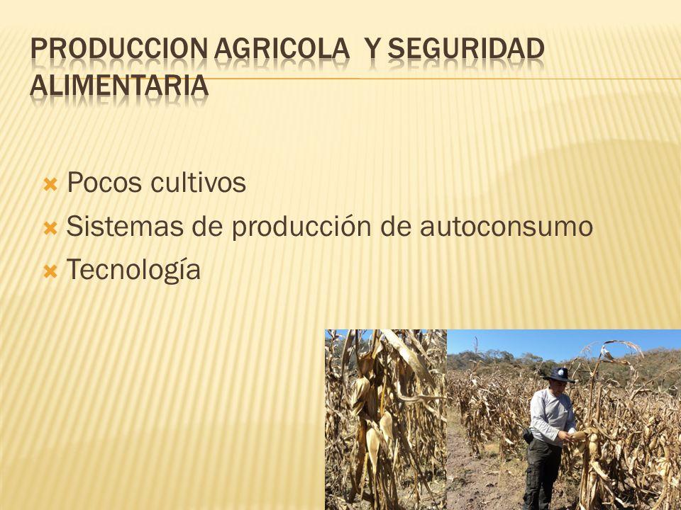 PRODUCCION AGRICOLA y seguridad alimentaria