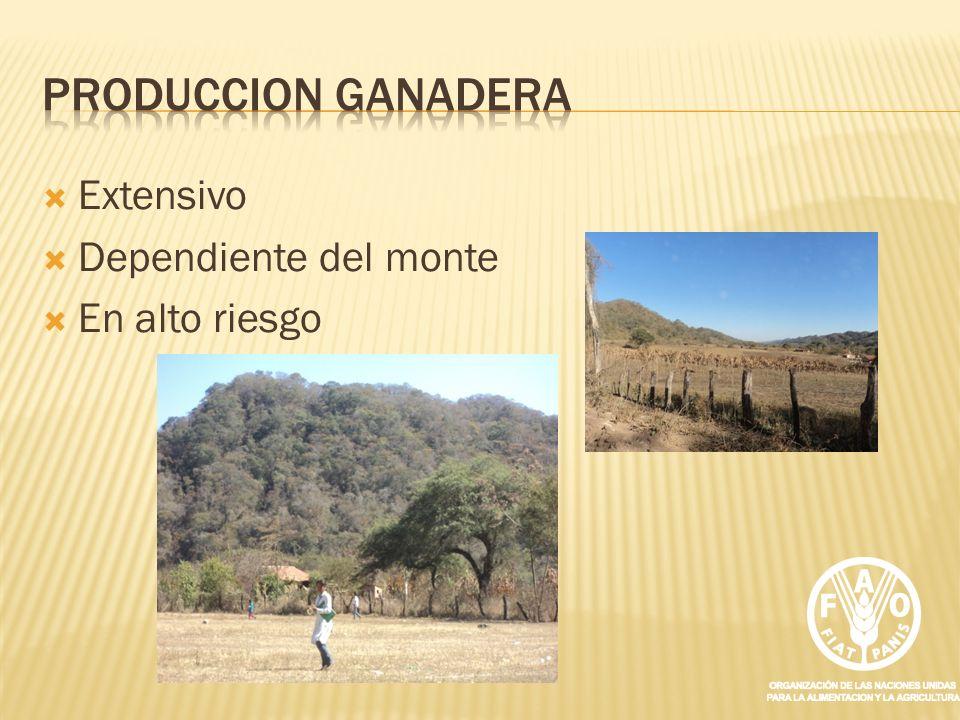 PRODUCCION GANADERA Extensivo Dependiente del monte En alto riesgo