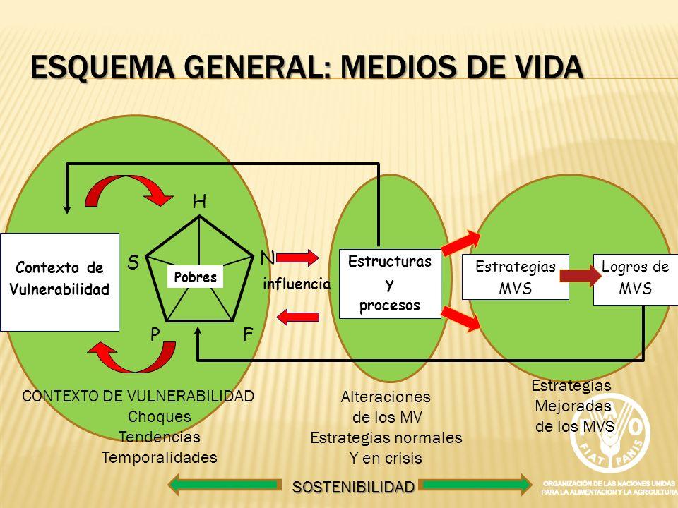 Esquema general: MEDIOS DE VIDA