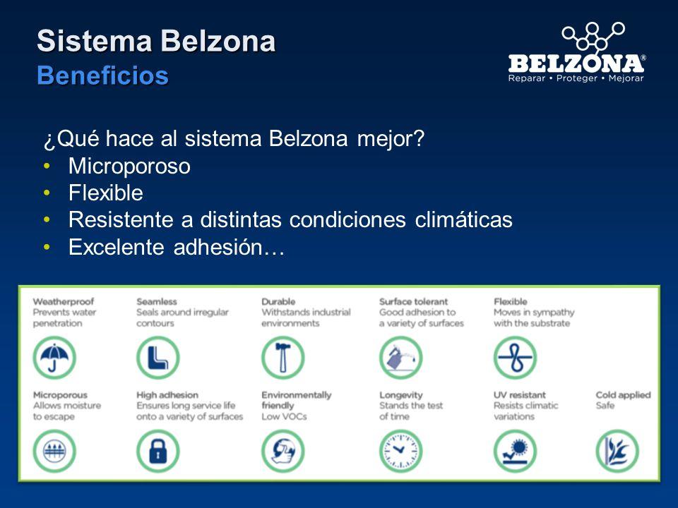 Sistema Belzona Beneficios ¿Qué hace al sistema Belzona mejor