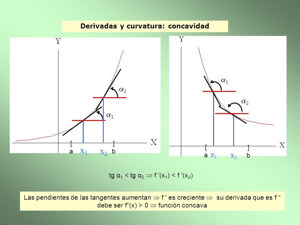 Derivadas y curvatura: concavidad