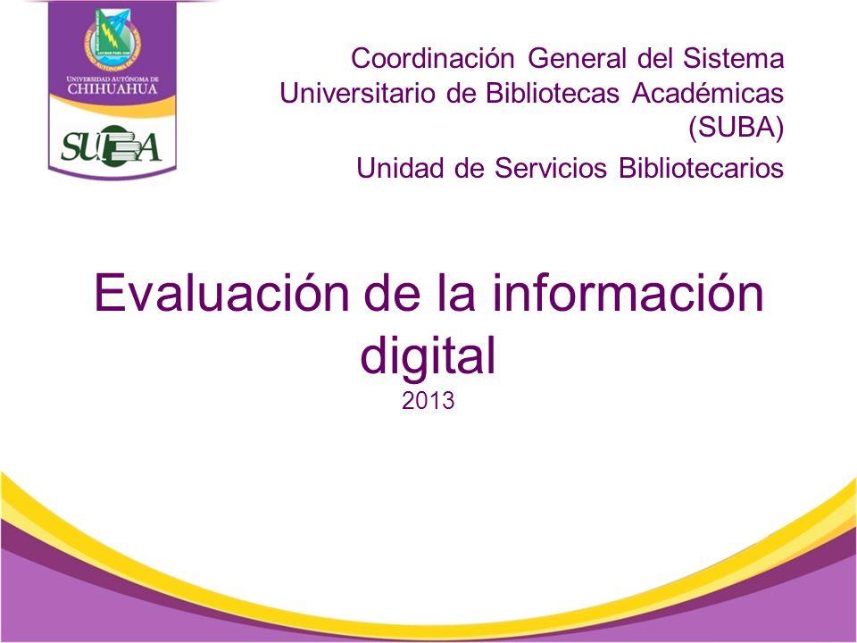 Evaluación de la información digital 2013