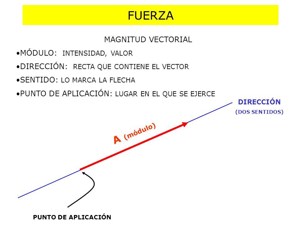 FUERZA A (módulo) MAGNITUD VECTORIAL MÓDULO: INTENSIDAD, VALOR