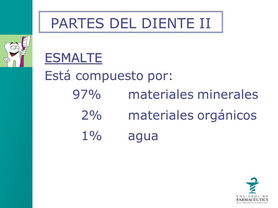 PARTES DEL DIENTE II ESMALTE Está compuesto por: