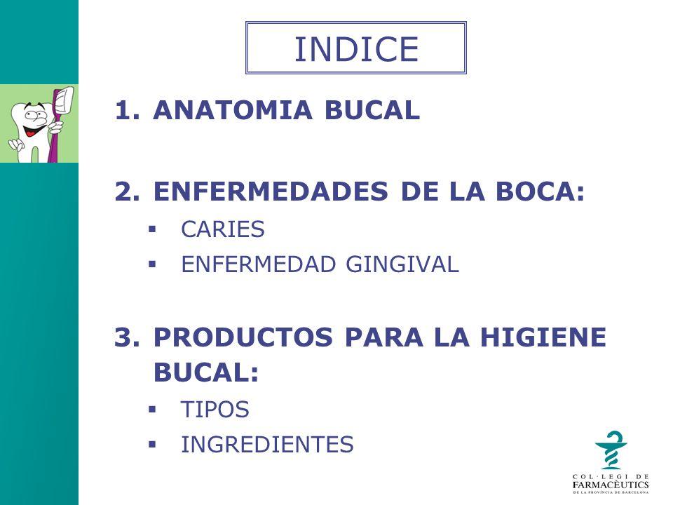 INDICE ANATOMIA BUCAL ENFERMEDADES DE LA BOCA: