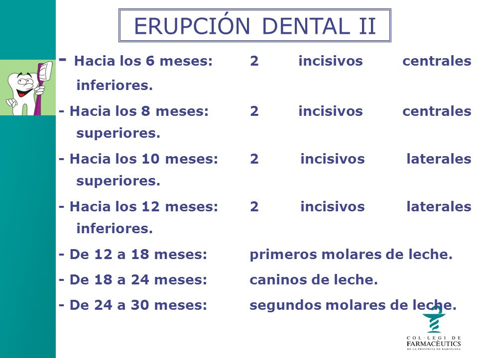 ERUPCIÓN DENTAL II - Hacia los 6 meses: 2 incisivos centrales inferiores. - Hacia los 8 meses: 2 incisivos centrales superiores.