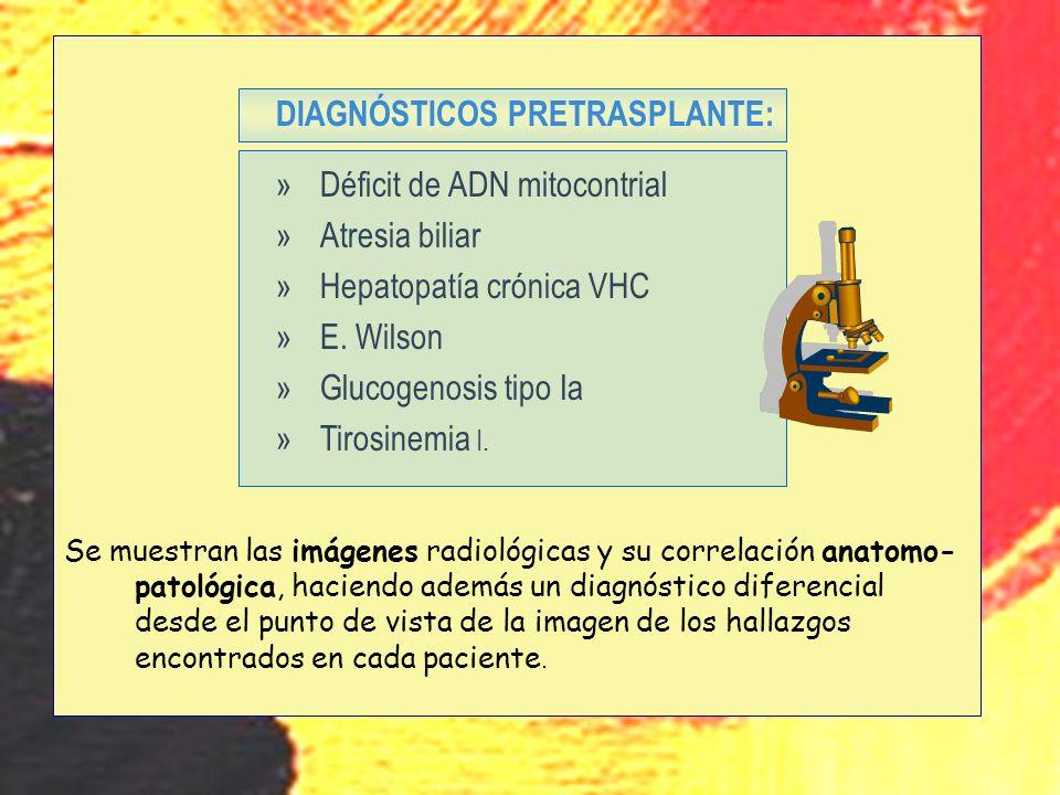 u DIAGNÓSTICOS PRETRASPLANTE: Déficit de ADN mitocontrial