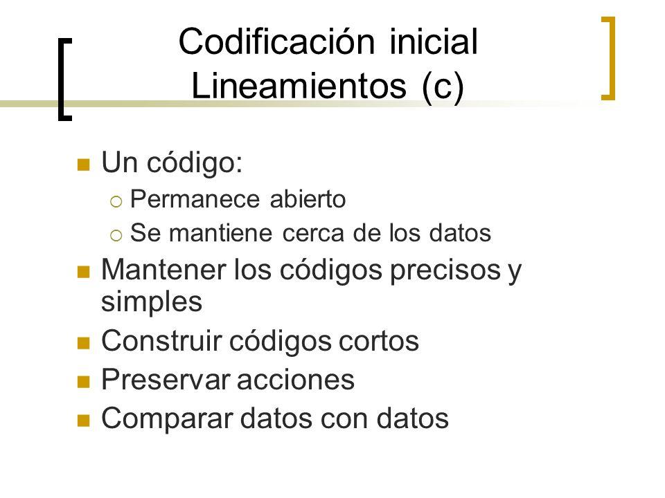 Codificación inicial Lineamientos (c)