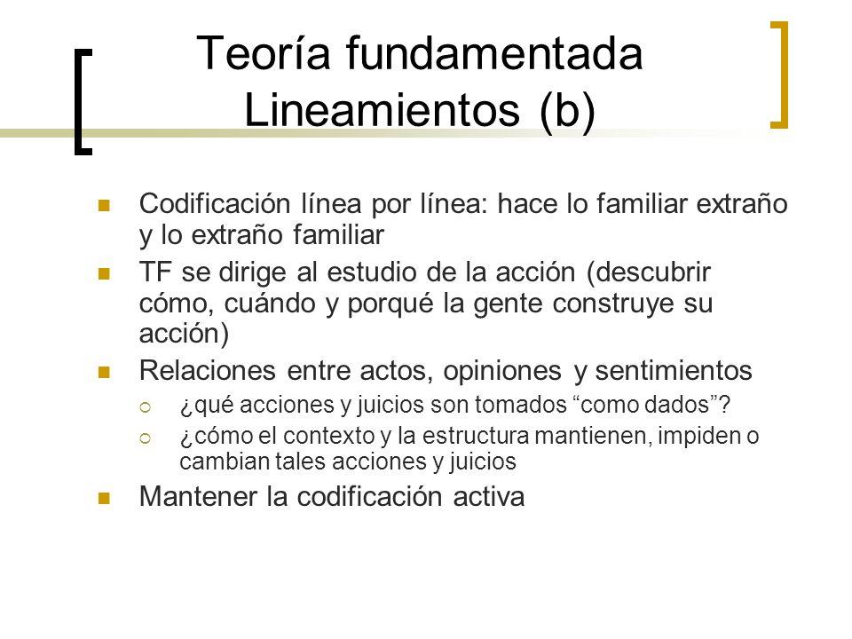 Teoría fundamentada Lineamientos (b)