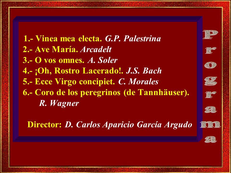 1. - Vinea mea electa. G. P. Palestrina 2. - Ave María. Arcadelt 3