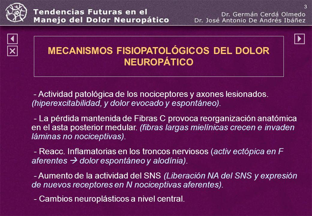 MECANISMOS FISIOPATOLÓGICOS DEL DOLOR NEUROPÁTICO