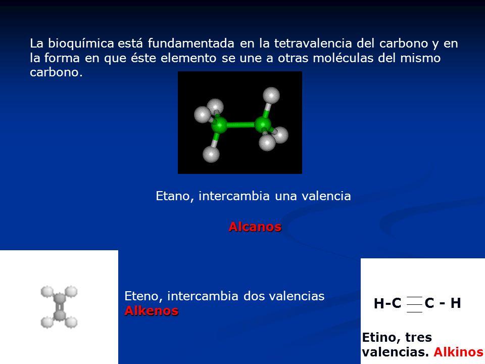 La bioquímica está fundamentada en la tetravalencia del carbono y en la forma en que éste elemento se une a otras moléculas del mismo carbono.