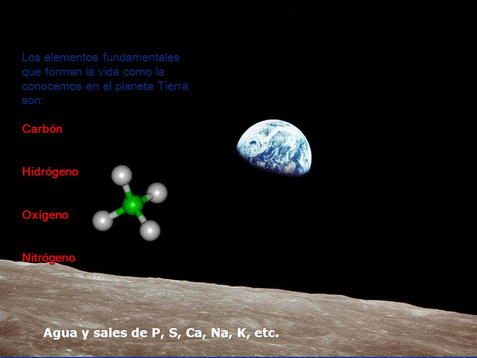 Los elementos fundamentales que forman la vida como la conocemos en el planeta Tierra son: