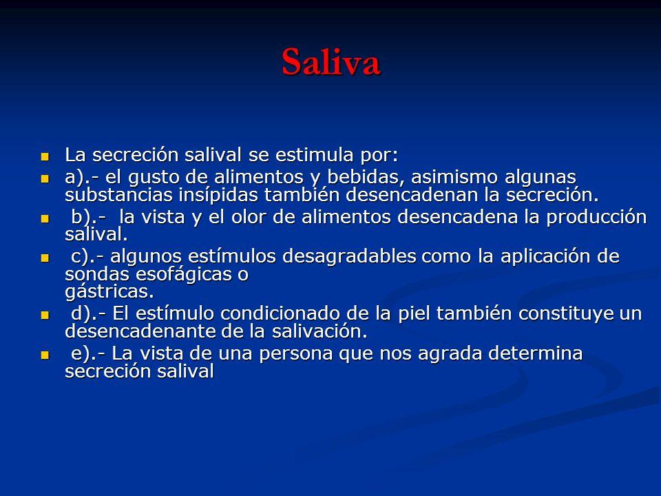 Saliva La secreción salival se estimula por: