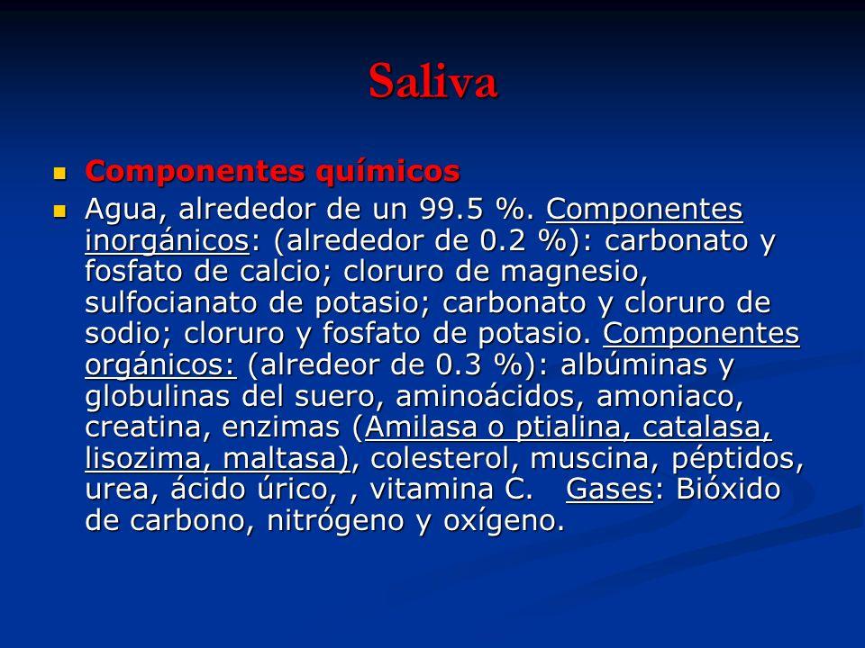 Saliva Componentes químicos
