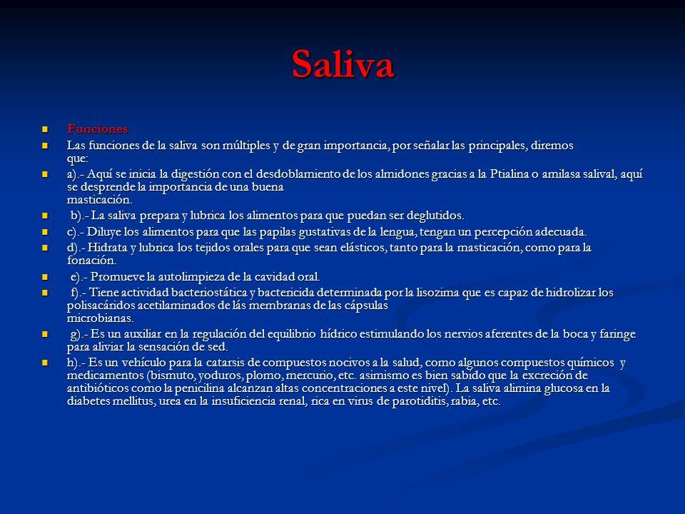 SalivaFunciones.
