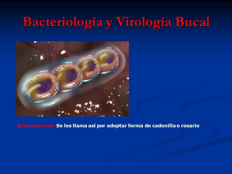 Bacteriología y Virología Bucal