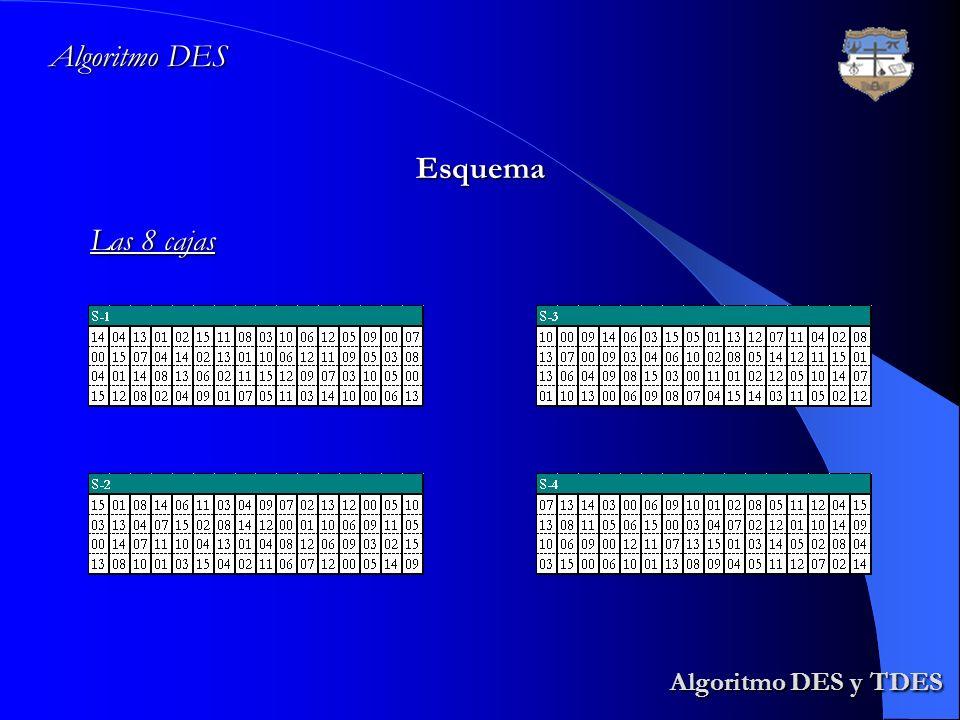 Algoritmo DES Esquema Las 8 cajas Algoritmo DES y TDES
